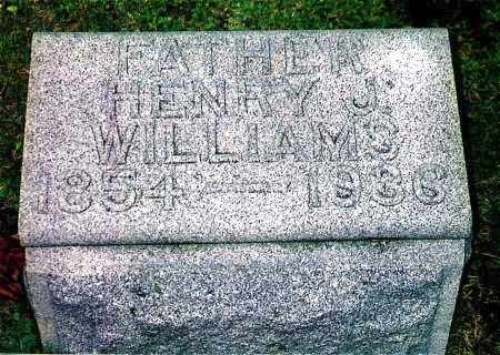WILLIAMS, HENRY JOHN - Northumberland County, Pennsylvania | HENRY JOHN WILLIAMS - Pennsylvania Gravestone Photos