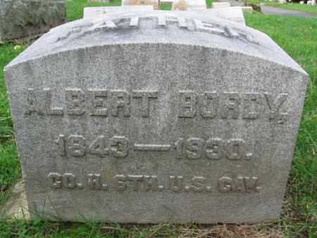 BORDY (CW), ALBERT - Schuylkill County, Pennsylvania | ALBERT BORDY (CW) - Pennsylvania Gravestone Photos