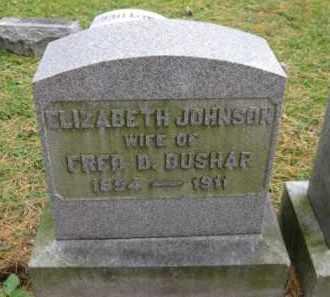 JOHNSON BUSHAR, ELIZABETH - Schuylkill County, Pennsylvania   ELIZABETH JOHNSON BUSHAR - Pennsylvania Gravestone Photos