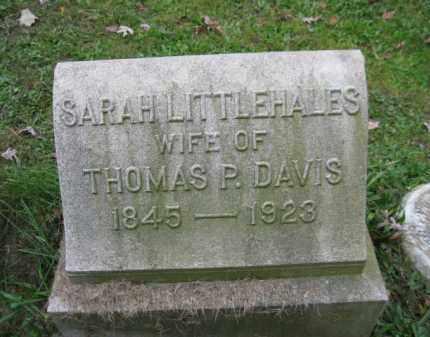 LITTLEHALES DAVIS, SARAH - Schuylkill County, Pennsylvania | SARAH LITTLEHALES DAVIS - Pennsylvania Gravestone Photos