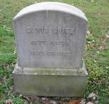 GRITZ, DAVID - Schuylkill County, Pennsylvania | DAVID GRITZ - Pennsylvania Gravestone Photos