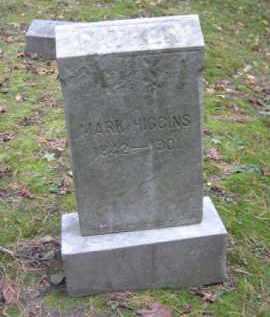 HIGGINS, MARK - Schuylkill County, Pennsylvania | MARK HIGGINS - Pennsylvania Gravestone Photos