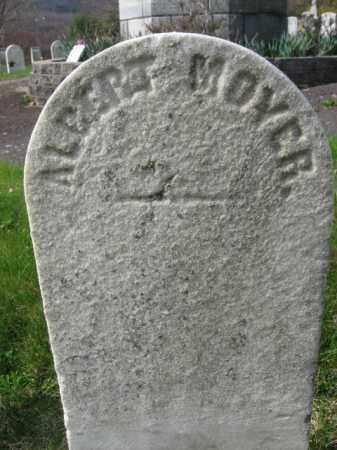 MOYER (CW), ALBERT - Schuylkill County, Pennsylvania | ALBERT MOYER (CW) - Pennsylvania Gravestone Photos