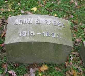 REESE, JOHN S. - Schuylkill County, Pennsylvania | JOHN S. REESE - Pennsylvania Gravestone Photos