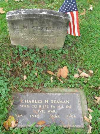 SEAMAN (CW), CHARLES H. - Schuylkill County, Pennsylvania | CHARLES H. SEAMAN (CW) - Pennsylvania Gravestone Photos
