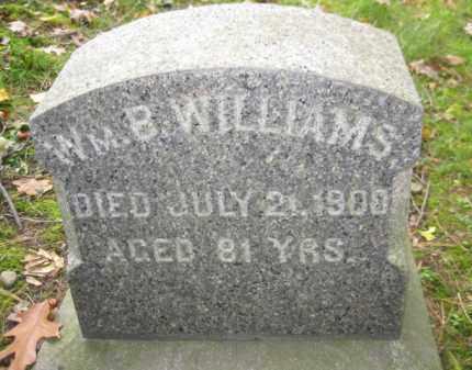 WILLIAMS, WILLIAM B. - Schuylkill County, Pennsylvania | WILLIAM B. WILLIAMS - Pennsylvania Gravestone Photos