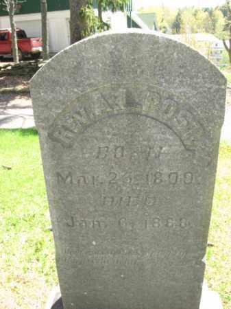 POST, REV. ALBERT L. - Susquehanna County, Pennsylvania | REV. ALBERT L. POST - Pennsylvania Gravestone Photos