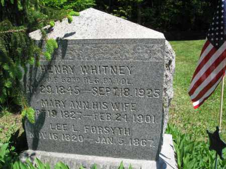 WHITNEY (CW), HENRY - Susquehanna County, Pennsylvania | HENRY WHITNEY (CW) - Pennsylvania Gravestone Photos