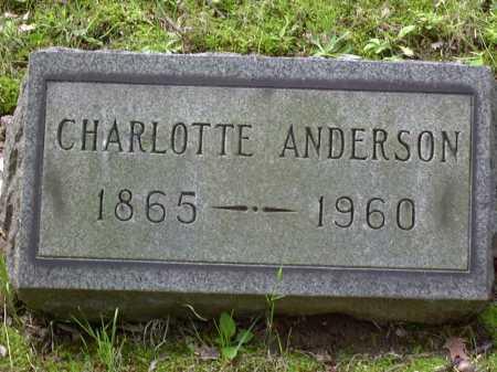 ANDERSON, CHARLOTTE - Washington County, Pennsylvania | CHARLOTTE ANDERSON - Pennsylvania Gravestone Photos