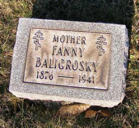 BALIGROSKY, FANNY - Washington County, Pennsylvania   FANNY BALIGROSKY - Pennsylvania Gravestone Photos