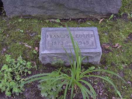 COOPER, FRANCES - Washington County, Pennsylvania | FRANCES COOPER - Pennsylvania Gravestone Photos