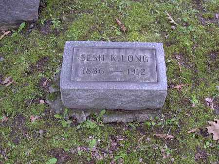 LONG, SESH - Washington County, Pennsylvania | SESH LONG - Pennsylvania Gravestone Photos