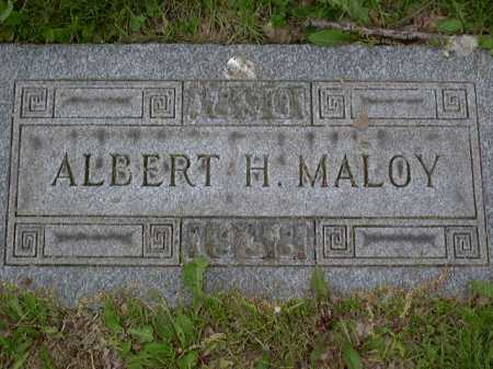 MALOY, ALBERT - Washington County, Pennsylvania | ALBERT MALOY - Pennsylvania Gravestone Photos