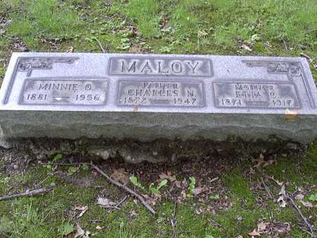 MALOY, MINNIE - Washington County, Pennsylvania | MINNIE MALOY - Pennsylvania Gravestone Photos