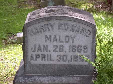 MALOY, HARRY - Washington County, Pennsylvania   HARRY MALOY - Pennsylvania Gravestone Photos