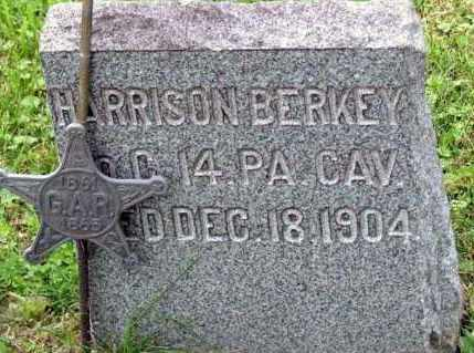 BERKEY (CW), HARRISON - Westmoreland County, Pennsylvania | HARRISON BERKEY (CW) - Pennsylvania Gravestone Photos