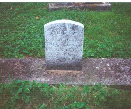 SIPE, LILIE E. - York County, Pennsylvania   LILIE E. SIPE - Pennsylvania Gravestone Photos