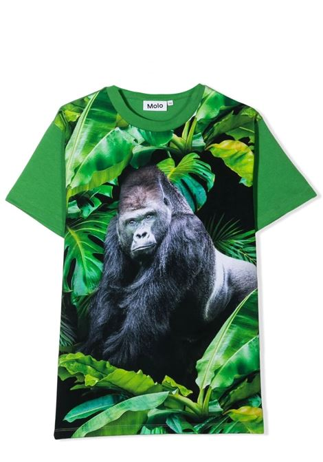 Children's T-shirt with graphic print MOLO KIDS | T-shirt | 1S21A229T7430
