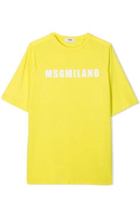 LOGO PRINT T-SHIRT MSGM KIDS | T-shirt | MS026827086