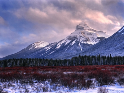 Landscape From Bow Valley Parkway Winter Banff