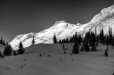 Rocky Mountains Winter Banff Monochrome