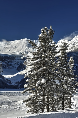 Winter Landscape Around Lake Louise In Winter