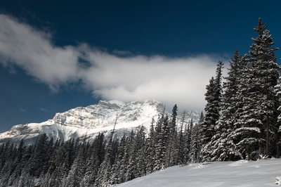 Winter Mountain Landscape Banff