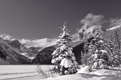 Winter Sunny Day On Lake Louise Monochrome