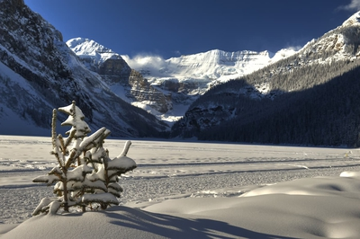 Winter Sunny Day On Lake Louise