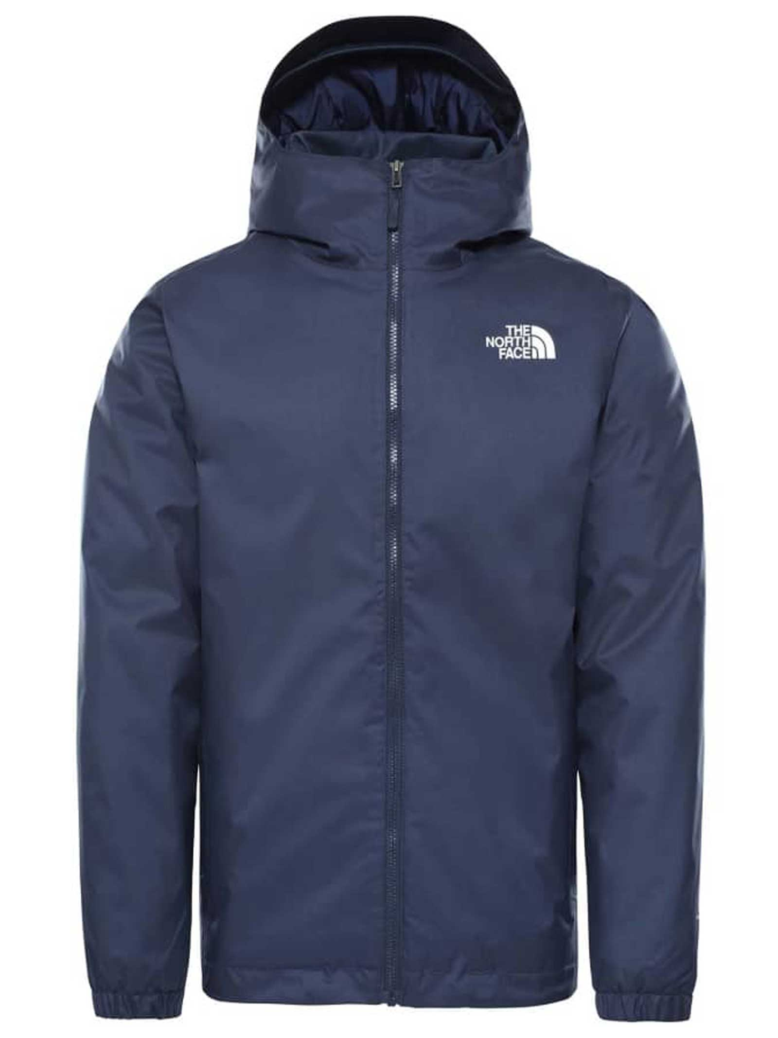 GIUBBOTTO THE NORTH FACE THE NORTH FACE | Giubbotto | NF00C302M6S