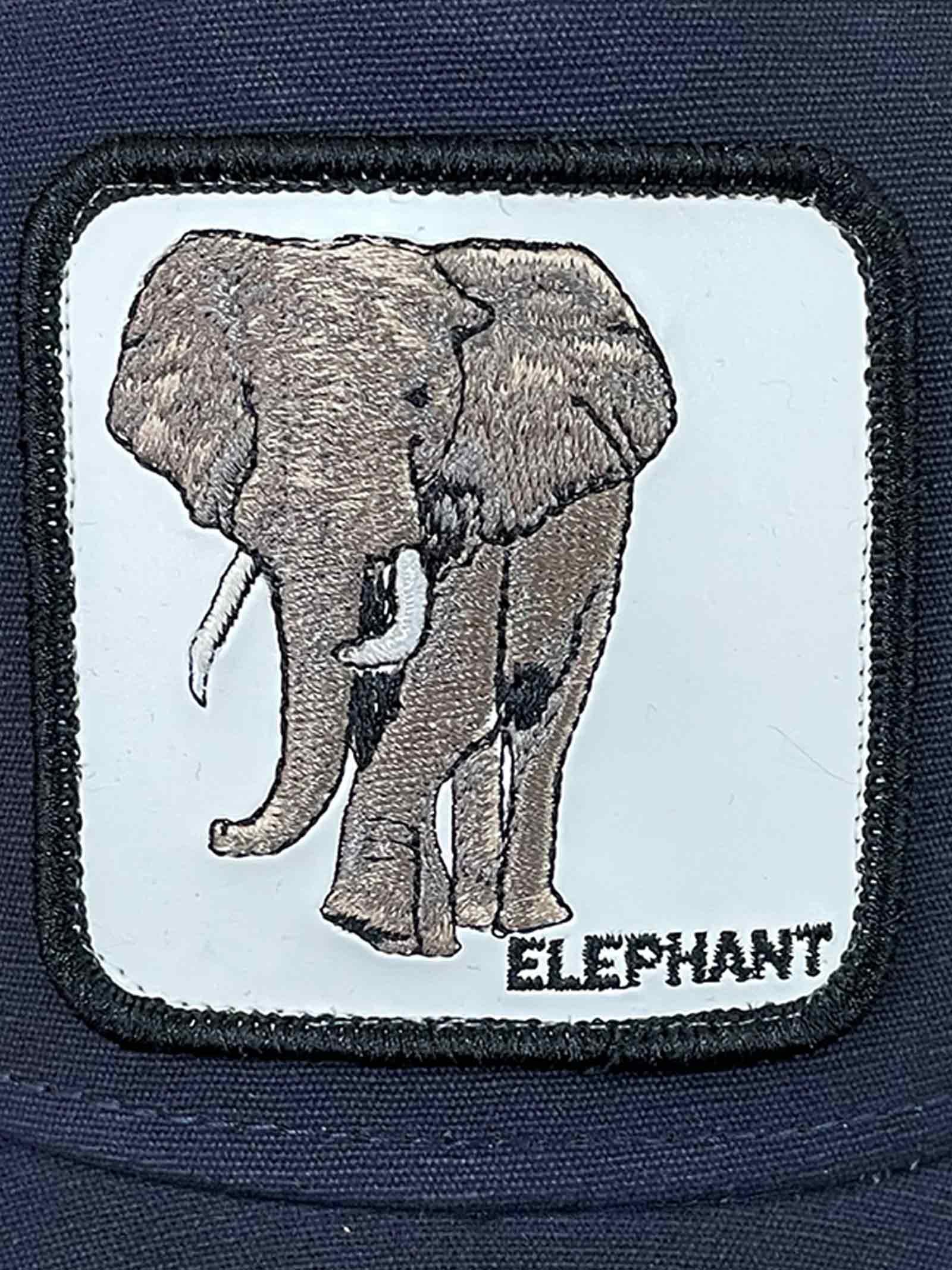 CAPPELLO UNISEX GOORIN BROS   Cappello   ELEPHANTBLU