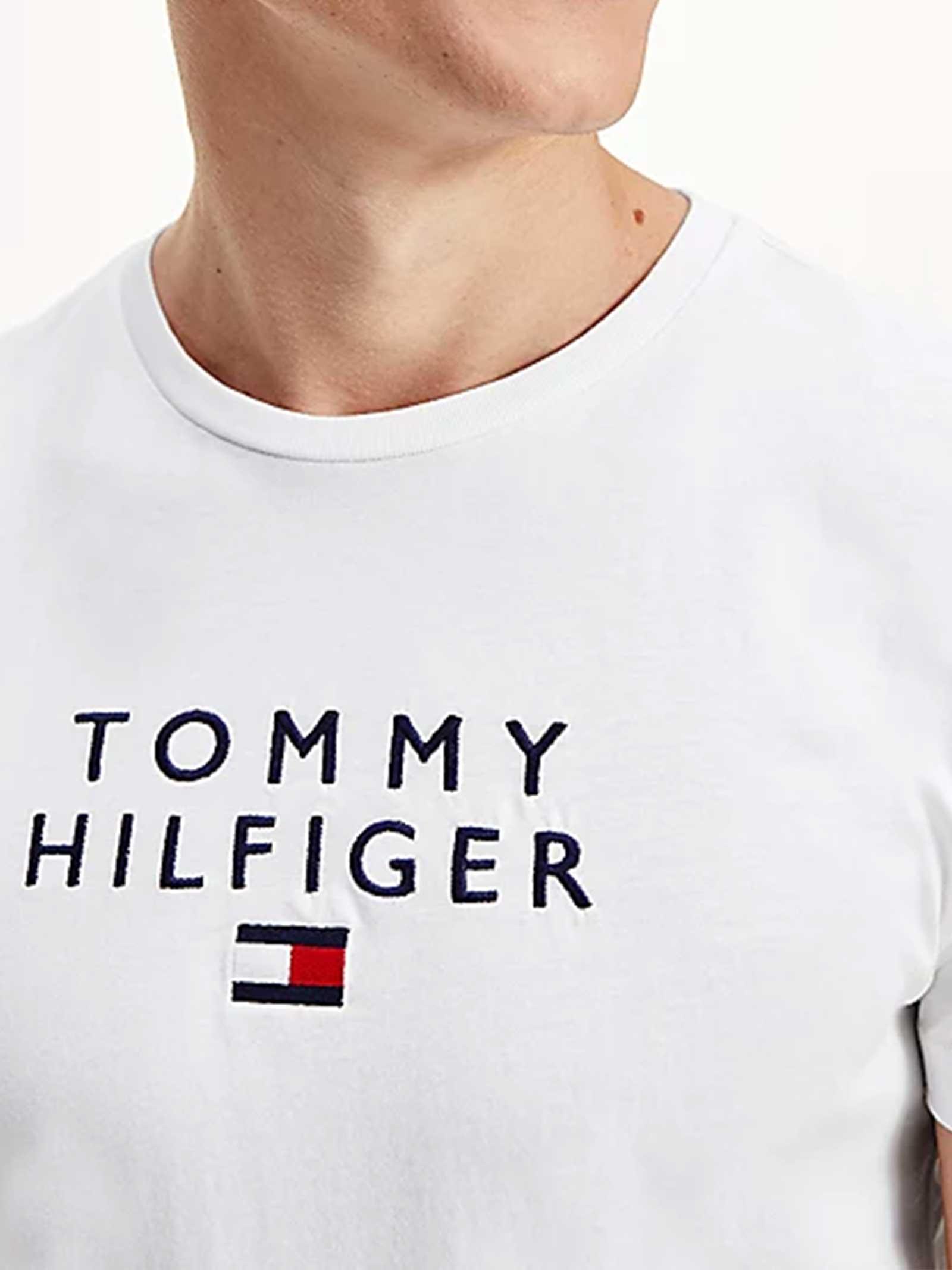 T-SHIRT UOMO TOMMY HILFIGER   T-shirt   MW0MW17663YBR