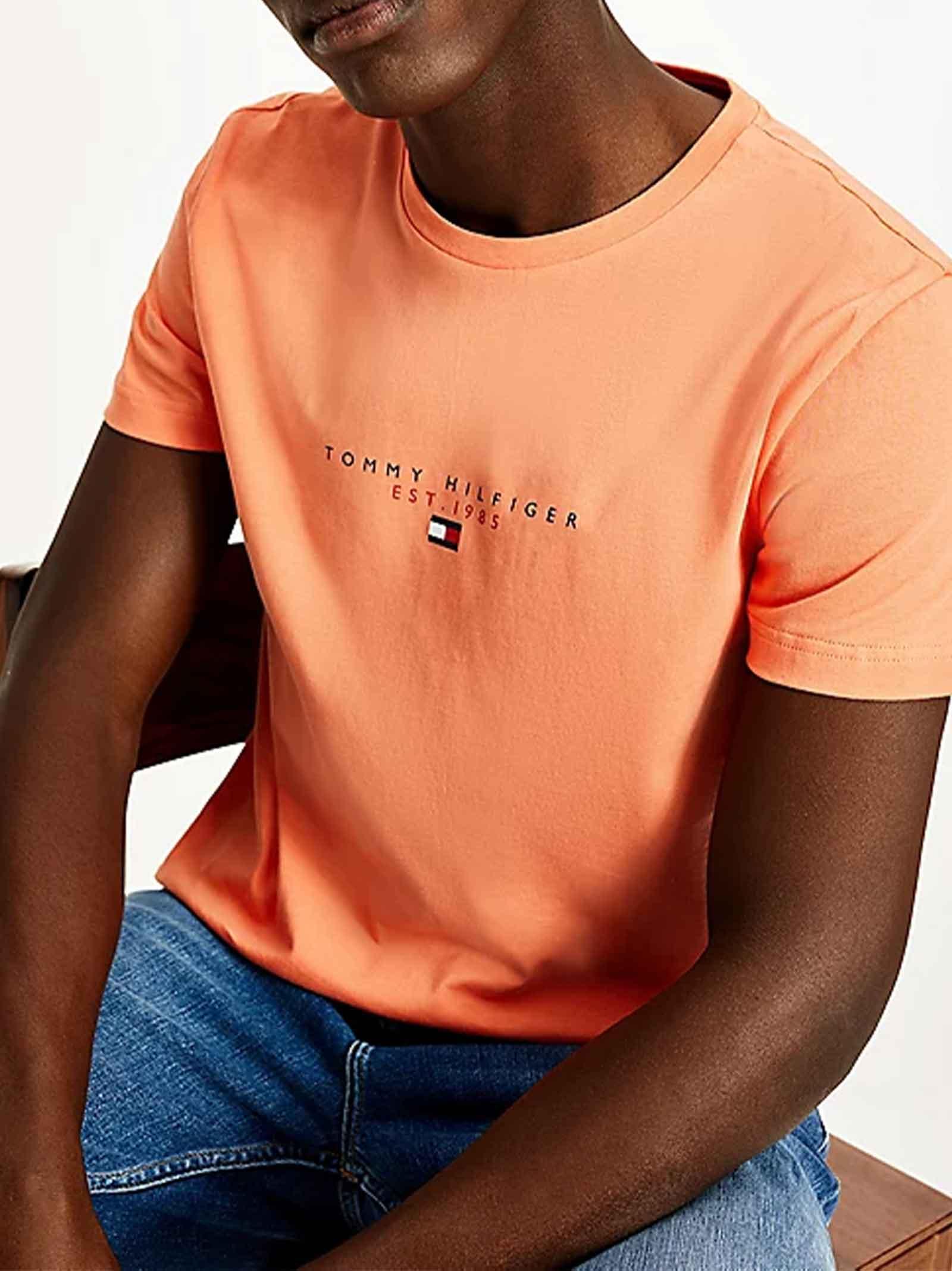 T-SHIRT UOMO TOMMY HILFIGER | T-shirt | MW0MW17676SO2