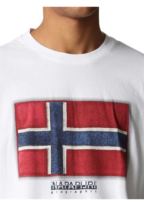 T-SHIRT UOMO NAPAPIJRI | T-shirt | NP0A4F9R002