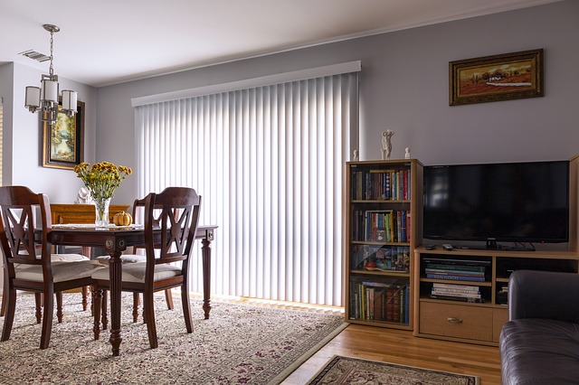 Blinds Or Curtain
