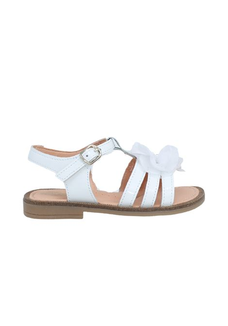Sandalo Fiore e Perle CLARYS | Sandali | 6135MIELE
