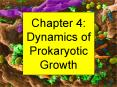 Chapter 4: Dynamics of Prokaryotic Growth PowerPoint PPT Presentation