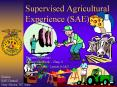 Supervised Agricultural Experience (SAE) PowerPoint PPT Presentation