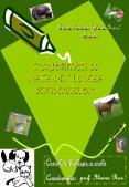 Scoala Generala  Avram Iancu  -Bistrita-CURIOZITATI SI DATE PowerPoint PPT Presentation