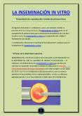 Inseminación in vitro PowerPoint PPT Presentation