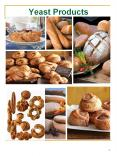 Yeast Products PowerPoint PPT Presentation
