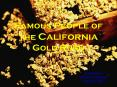 Famous People of the California Gold Rush PowerPoint PPT Presentation