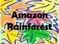 Amazon Rainforest PowerPoint PPT Presentation