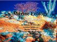 Marine Ecology ?????? ??????? PowerPoint PPT Presentation