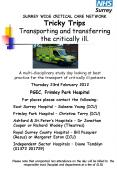 SURREY WIDE CRITICAL CARE NETWORK Tricky Trips Transporting and transferring the critically ill. PowerPoint PPT Presentation