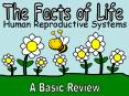 A Basic Review PowerPoint PPT Presentation
