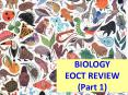 BIOLOGY EOCT REVIEW (Part 1) PowerPoint PPT Presentation