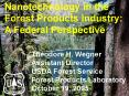 Nanotechnology in the Forest Products Industry: PowerPoint PPT Presentation