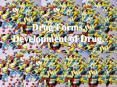 Drug Forms. Development of Drug. PowerPoint PPT Presentation