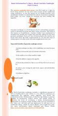 Basic Information To Know About Garcinia Cambogia Fruit Extract PowerPoint PPT Presentation